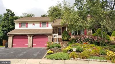 Ephrata Single Family Home For Sale: 126 Gery Court
