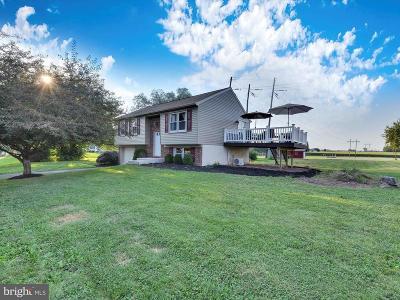 Mount Joy Single Family Home For Sale: 1115 Stellar Drive