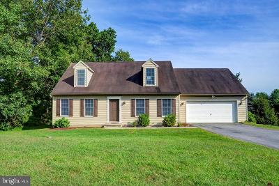Manheim Single Family Home For Sale: 805 Aarons Lane