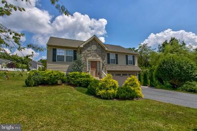 Single Family Home For Sale: 530 Millway Road