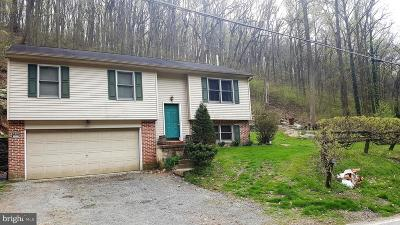 Single Family Home For Sale: 532 Bridge Valley Road
