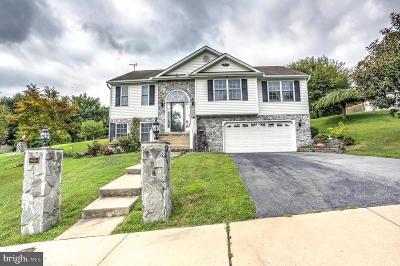 Lancaster County Single Family Home For Sale: 407 Rabbit Hill Lane