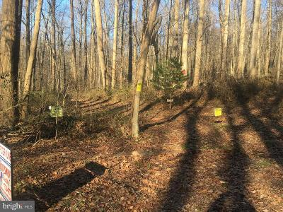 Residential Lots & Land For Sale: Mountain Spring Road