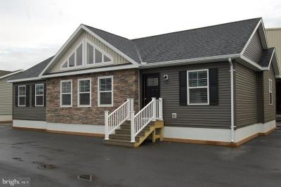 Single Family Home For Sale: 140 E Mountain Road