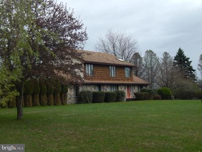 Single Family Home For Sale: 1192 Sandy Valley