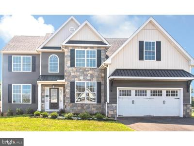 Montgomery County Single Family Home For Sale: 794 Caley Road