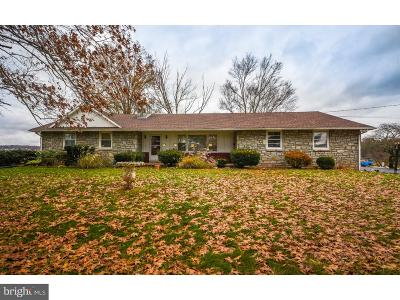 Harleysville Single Family Home For Sale: 528 Sumneytown Pike