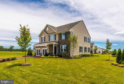 Montgomery County Single Family Home For Sale: 524 Spring Manor Boulevard
