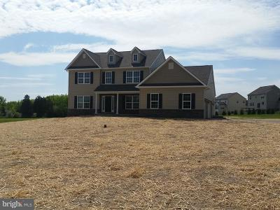 Montgomery County Single Family Home For Sale: 001 County Line Road