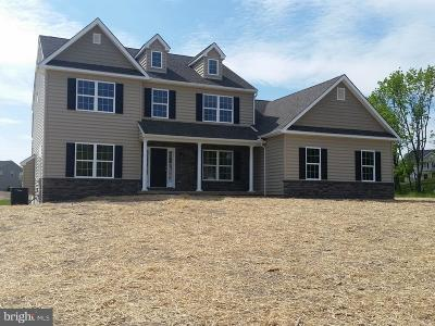 Montgomery County Single Family Home For Sale: 003 County Line Road