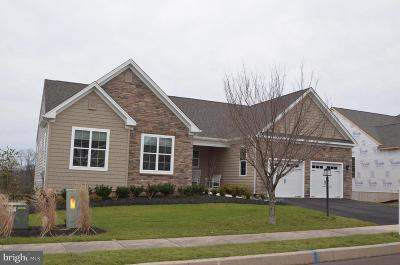 Montgomery County Single Family Home For Sale: 2544 Saint Victoria Drive