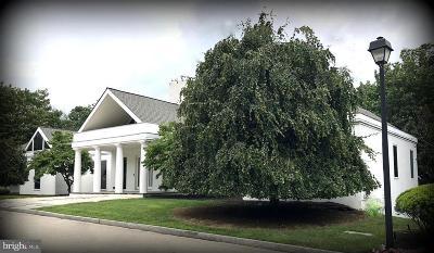 Gladwyne Single Family Home For Sale: 1330 N Avignon Drive