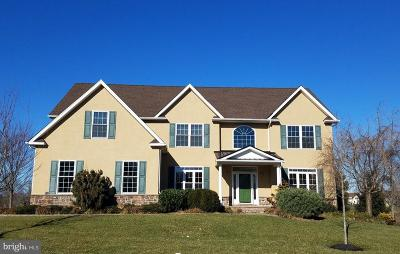Harleysville Single Family Home For Sale: 981 Gallery Drive