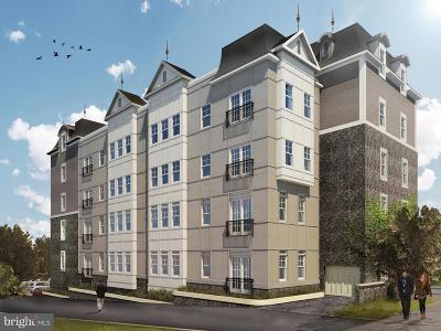 Montgomery County Condo For Sale: 537 Apple Street #401 PH