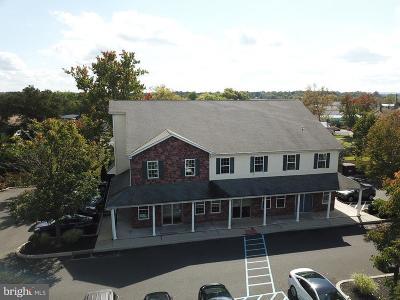Montgomery County Condo For Sale: 292-B W Ridge Pike