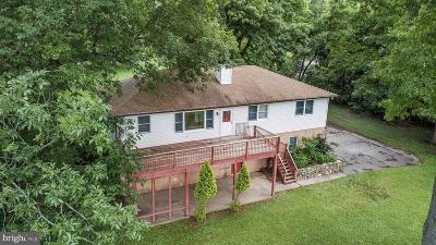 Norristown Single Family Home For Sale: 60 W Indian Lane