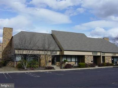 Plymouth Meeting Condo For Sale: 1000 Germantown Pike #E2