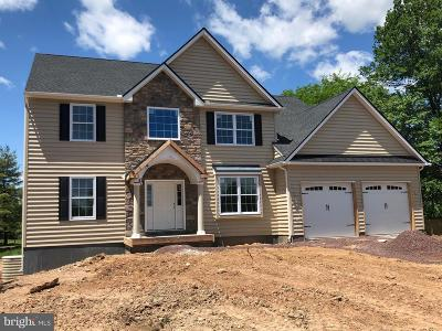 Montgomery County Single Family Home For Sale: 461 Groff Mill Road