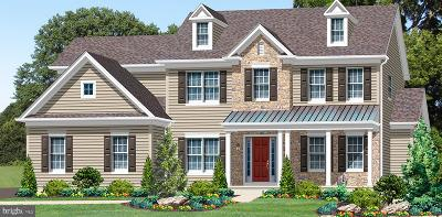 Montgomery County Single Family Home For Sale: 2720 Lot 1 Geryville Pike