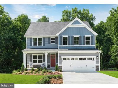 Montgomery County Single Family Home For Sale: 223 Melrose Drive