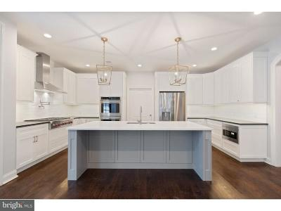 Montgomery County Single Family Home For Sale: 205-B Valley Road