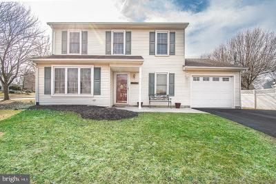 Montgomery County Single Family Home For Sale: 318 Huckleberry Lane