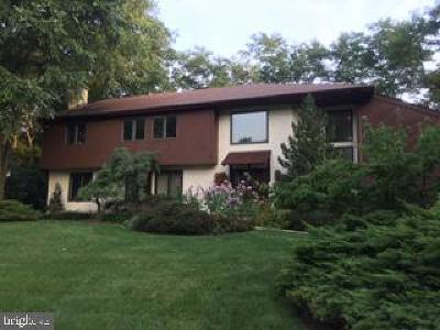 Villanova Single Family Home For Sale: 788 Panorama Road