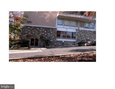 Jenkintown Condo For Sale: 100 West Avenue #905S, 91