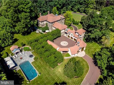 Villanova Single Family Home For Sale: 733 N Spring Mill Road