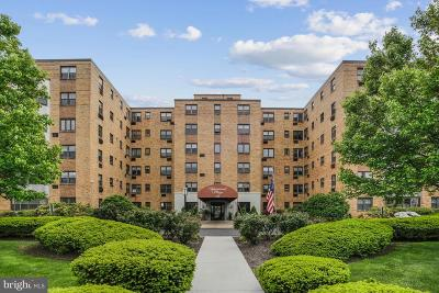 Wynnewood Condo For Sale: 346 E Lancaster Avenue #215