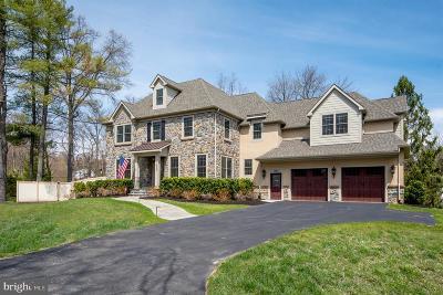 Villanova Single Family Home For Sale: 1523 Willowbrook Lane