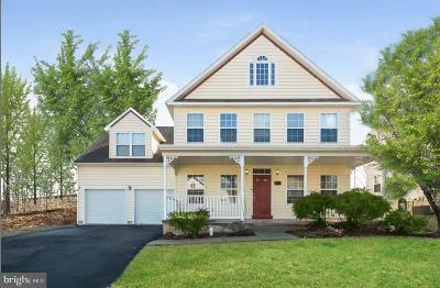 Collegeville Single Family Home For Sale: 180 Glenwood Avenue