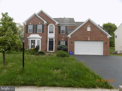 Pottstown Single Family Home For Sale: 2607 Anthony Drive