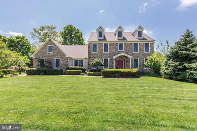 Montgomery County Single Family Home For Sale: 749 Annes Court