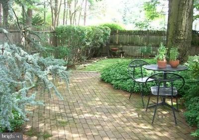 Wynnewood Single Family Home For Sale: 433 Haverford Road