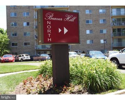 Rental For Rent: 100 West Avenue #414N
