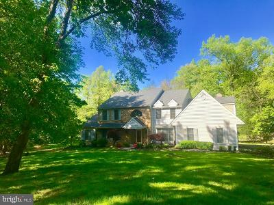 Montgomery County Single Family Home For Sale: 691 School Road