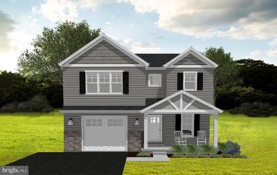 Montgomery County Single Family Home For Sale: 52 Perkiomen Avenue #AKA 15 3