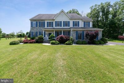 Collegeville Single Family Home For Sale: 2980 Horseshoe Drive