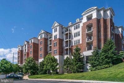 Conshohocken Single Family Home For Sale: 300 W Elm Street #2117