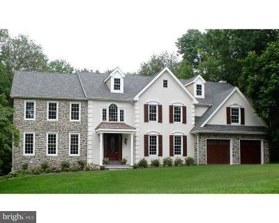 Villanova Single Family Home For Sale: 1315 Prospect Hill Road