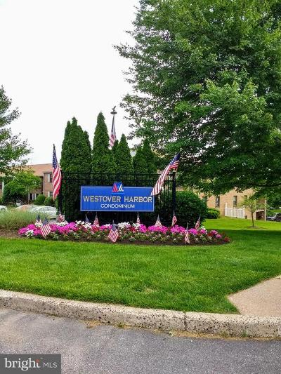 Norristown Condo For Sale: 167 Woodstream Drive