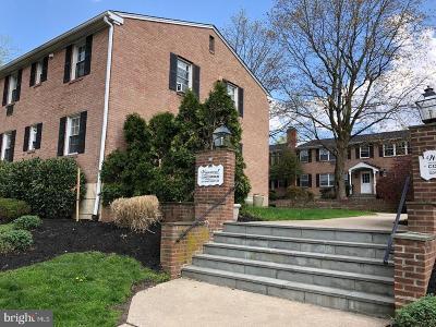 Narberth Condo For Sale: 1334 Montgomery, Avenue #A2