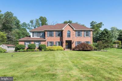 Montgomery County Single Family Home For Sale: 116 Level Road