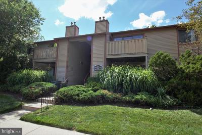 Lansdale Single Family Home For Sale: 510 Poplar Court