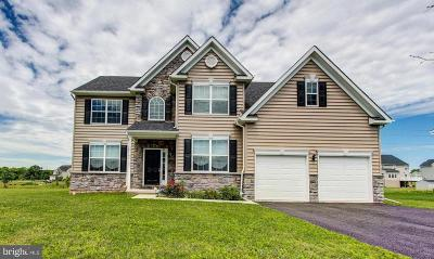 Montgomery County Single Family Home For Sale: 45 Detar Drive