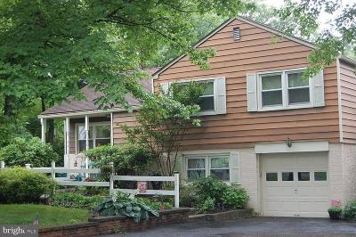 Lansdale Single Family Home For Sale: 994 Jacks Lane