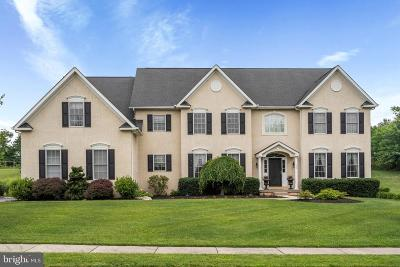 Collegeville Single Family Home For Sale: 33 Spring Mill Lane
