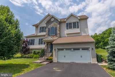 Norristown Single Family Home For Sale: 1003 Pimlico Drive