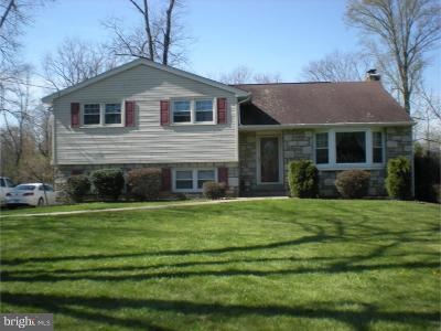 Ambler Single Family Home For Sale: 1247 Horsham Road
